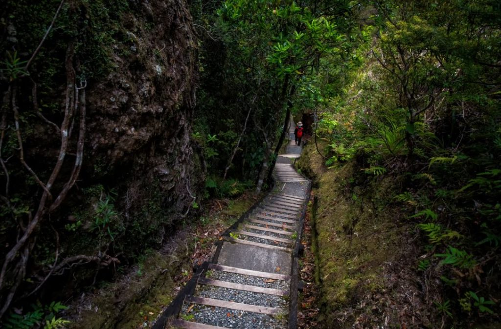the-steps-in-the-mountain