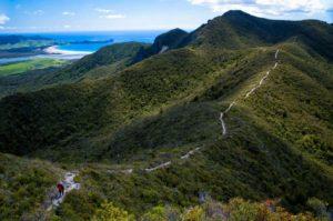 ridge-pathway-in-the-mountain-in-newzealand
