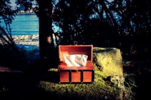 tissue-box-on-the-rock