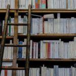 book-shelf-and-ladder